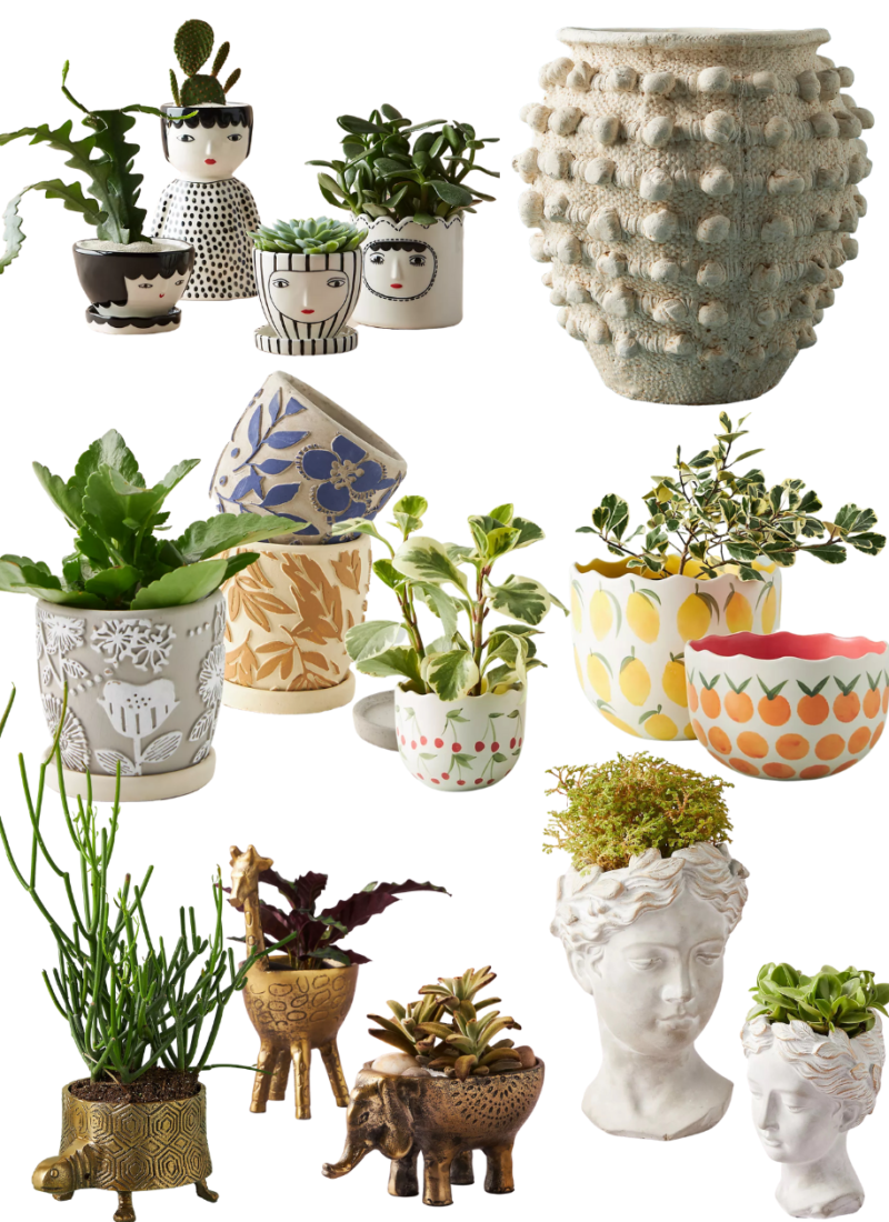 The Cutest Anthropologie Planters